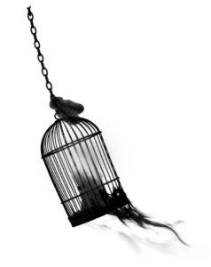 detail-birdcage