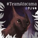 Spellchasers team Atacama