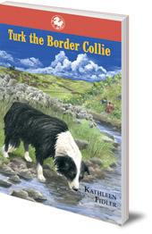 Turk the Border Collie