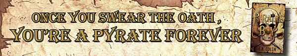 DK Pyrate's Boy banner