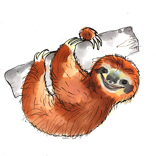 Name A Character Competition - sloth image