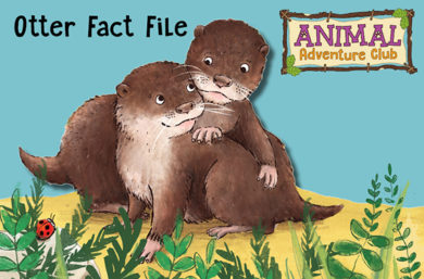 Animal Adventure Club: Otter Fact File